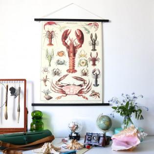 Affiche Crustacés - Cavallini & Co