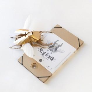 Kit de pliage papier coléoptère doré (Stag Beetle) - Trophée assembli
