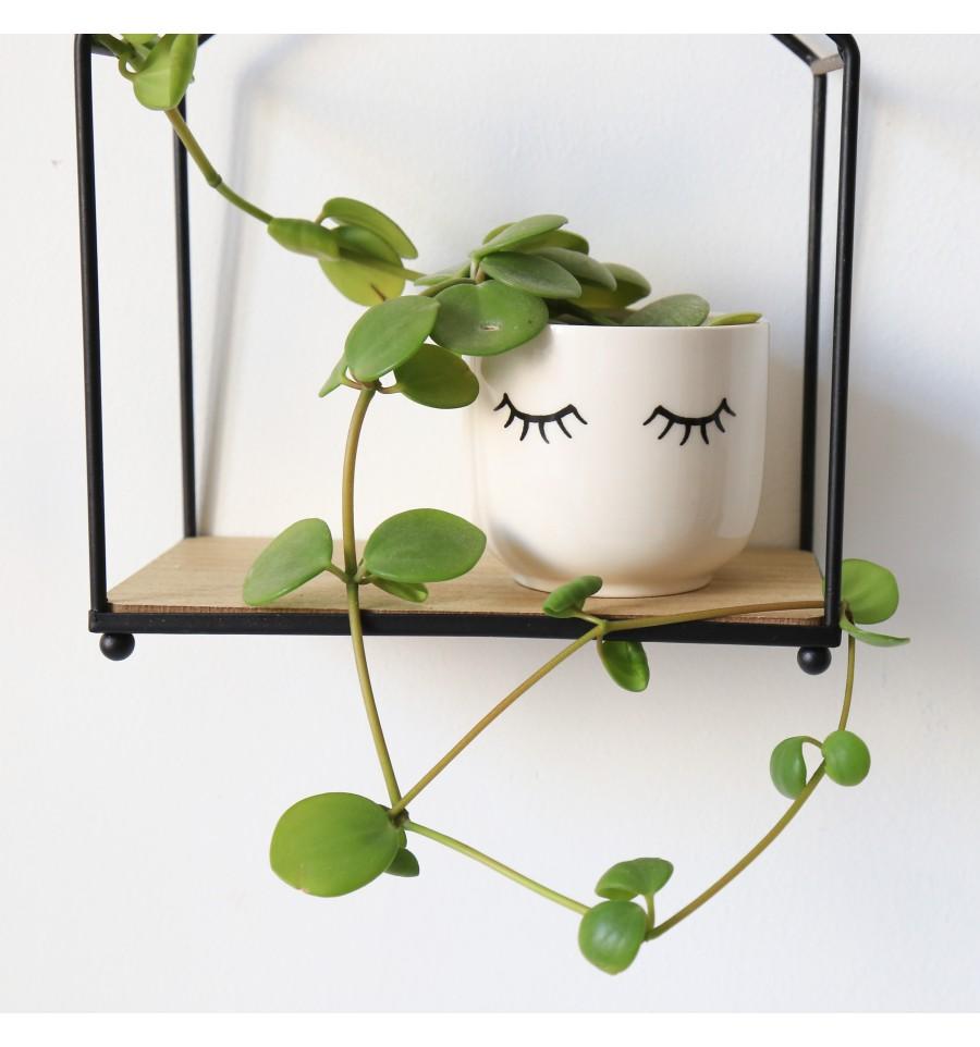 Mini pot pour plante avec des yeux for Pot pour plante