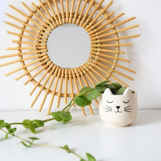 Mini pot pour plante chat