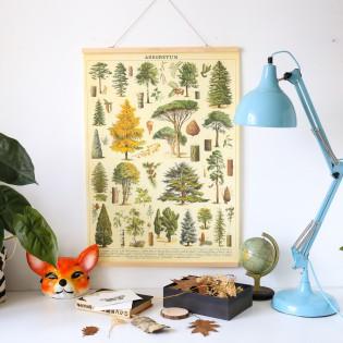 Affiche arbres de la forêt rétro - Cavallini