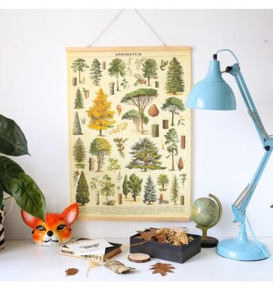 Affiche Arbres de la forêt