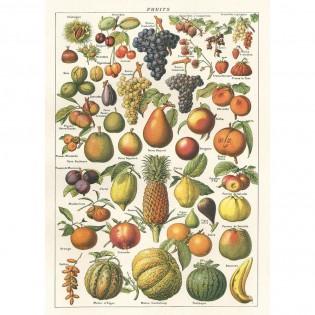Affiche pédagogique fruits - Cavallini