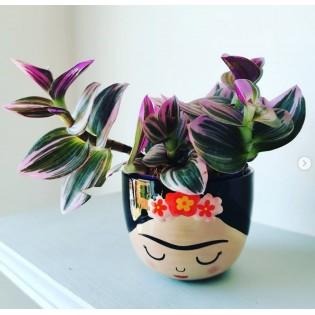 Mini pot Frida - Sass & Belle