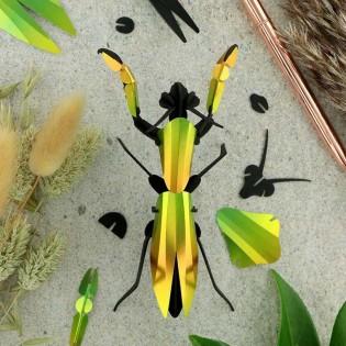 Insecte DIY Mante Religieuse - Assembli