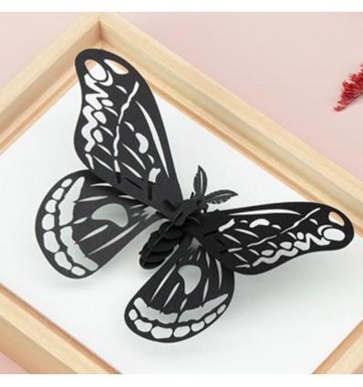 Insecte DIY Papillon Noir - Assembli