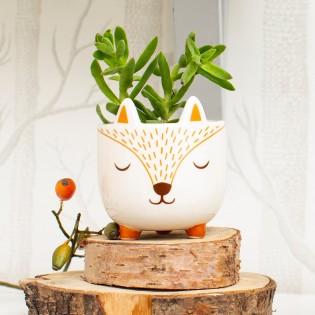 Mini pot pour plante renard - Sass & Belle