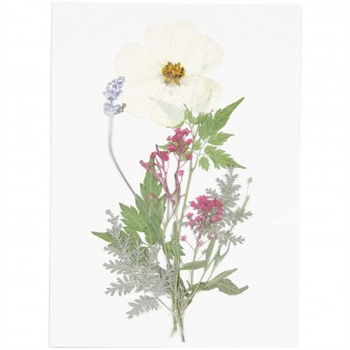 Fleurs pressées Blanc Violet - Rico Design